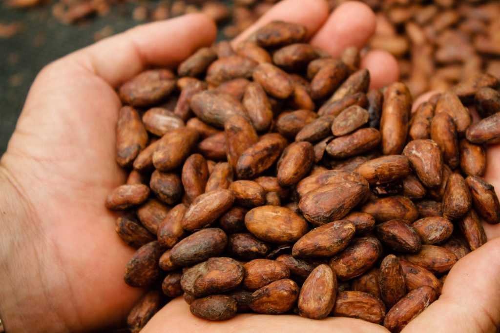 Gourmet Chocolate Tour & Local Traditions